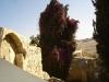 Jerozolima i Betlejem