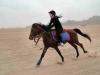 safari-sharm-el-sheikh-e-sharm-005