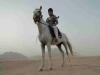 safari-sharm-el-sheikh-e-sharm-007