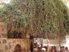 e-sharm-wycieczka-klasztor-sw-katarzyny-001